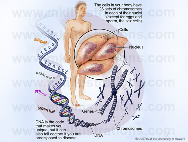DNA_patient_education