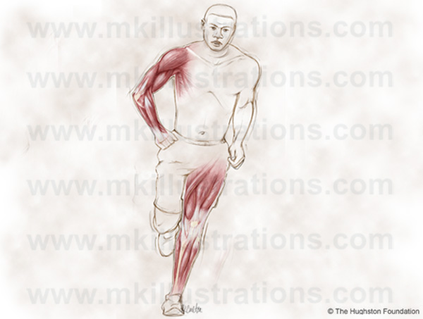 running_man_musculature